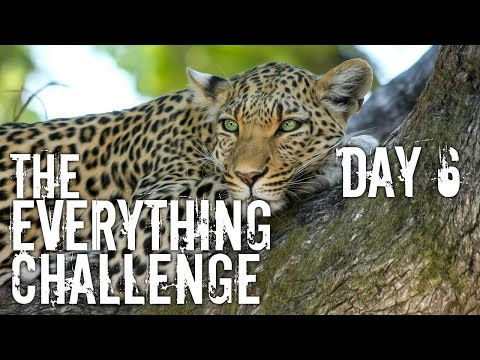 The Everything Challenge - Work Out with me ! Day 6