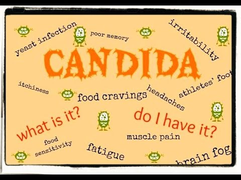 Does fruit feed Candida and parasites?