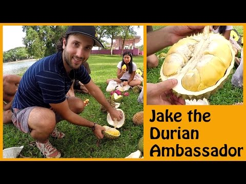 JAKE THE DURIAN AMBASSADOR BLESSING US ONCE MORE WITH HIS VAST DURIAN KNOWLEDGE