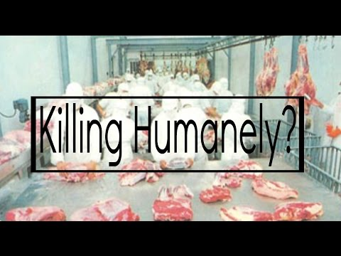 Killing Humanely?