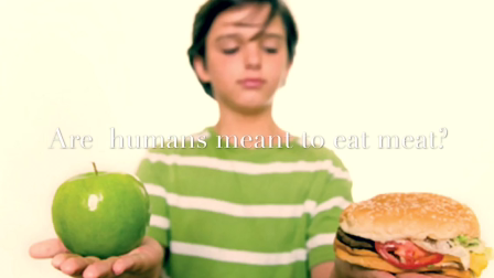 Are humans meant to eat meat?