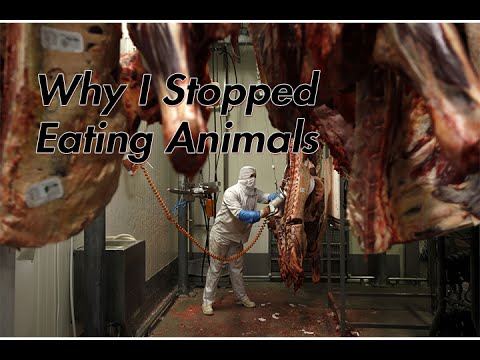 Why I Stopped Eating Animals