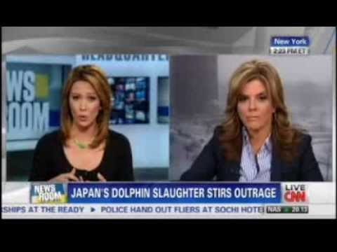 Vegan WORD on CNN (Jane Velez-Mitchell talks about Japanese: Dolphin hunting)  + my commentary