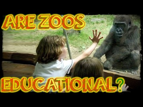 Are Zoos Educational?