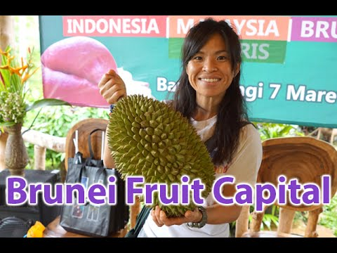 Interview: Come to Brunei for the best jungle fruit in the world - Raw Food Asia Fruitarian