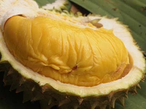 MALAYSIAN DURIAN FIRST EXPERIENCE! MUSANG KING AND RED PRAWN