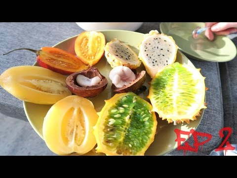 FRUIT YOURSELF EP 2: EXOTIC FRUITS (Yellow Pitahaya, Mangosteen, Kiwano etc..)