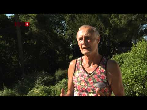 Roger King - UK Fruitfest 2015 Testimonial