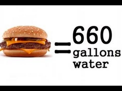 Cowspiracy Shocking Facts Reaction