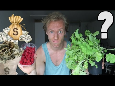 HOW MUCH MONEY I SPEND ON FRUITS & VEGETABLES AS A VEGAN IN FINLAND?