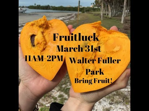 March 31st Fruitluck at Walter Fuller Park!