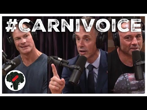 Carnivore Diet Side Effects - CARNIVORE VOICE