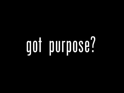 Why Having A Purpose Is Stupid
