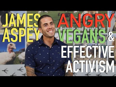 Veganism, Angry Vegans, & Effective Activism - James Aspey