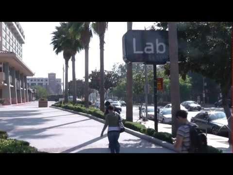 Top 10 Walkable Restaurants Near USC