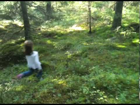 Mushroom hunting in Norway