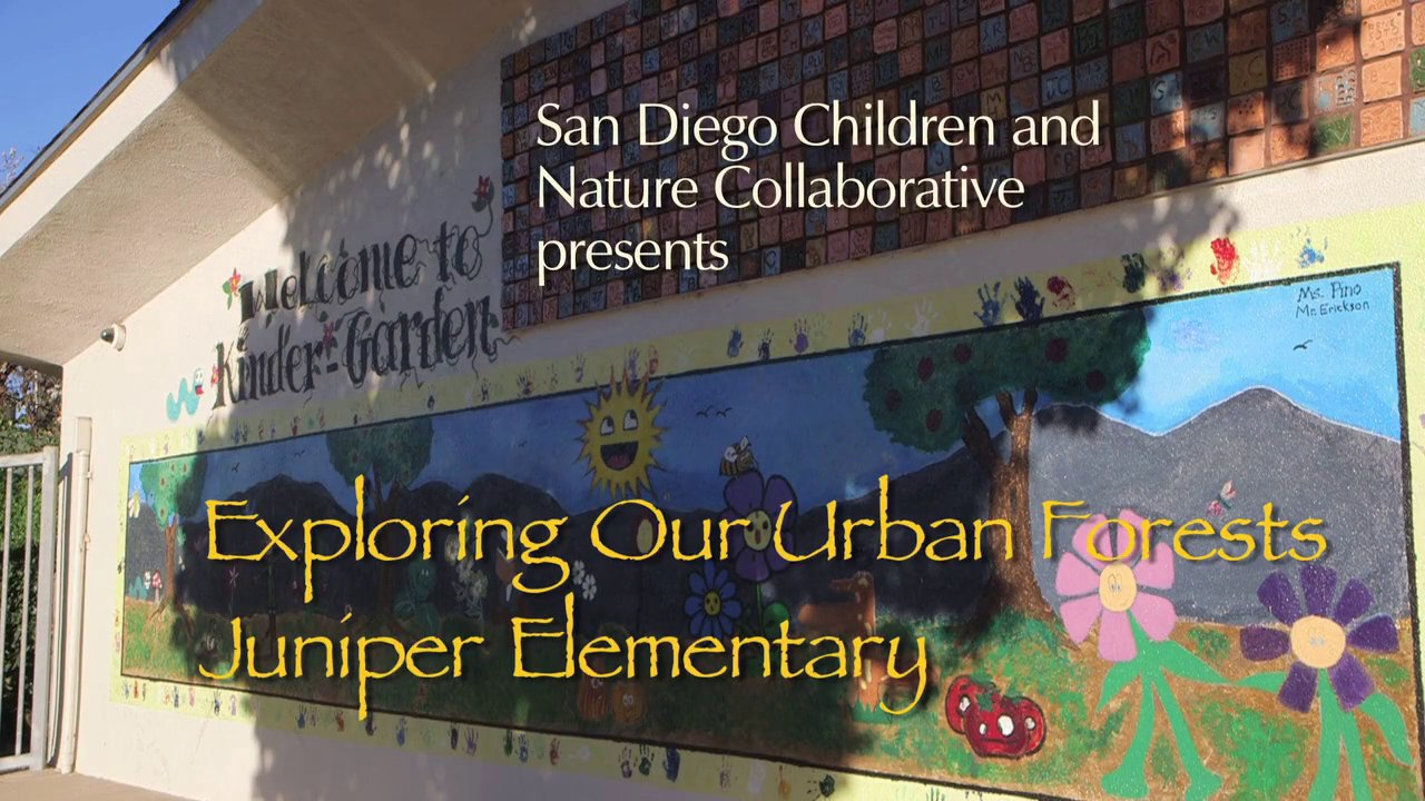 Exploring Our Urban Forests - Juniper Elementary