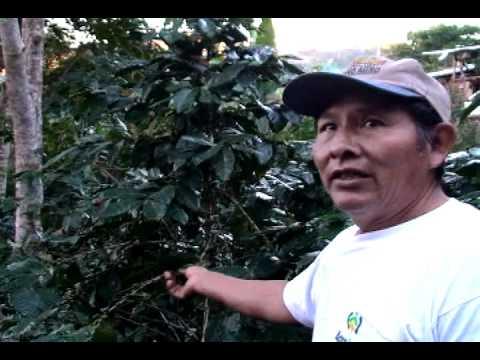 El trabajo de la CNCJ-Perú