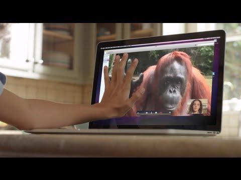 Un orang-outan demande de l'aide en langue des signes!