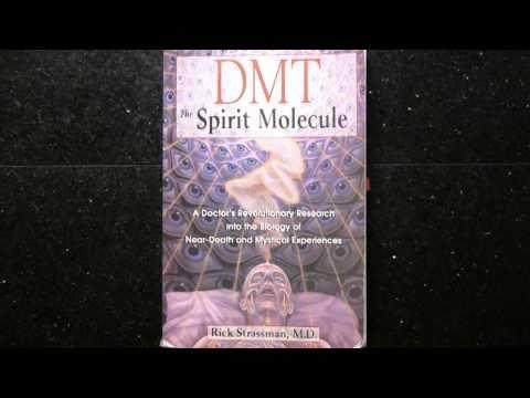 pt.1 of 9 - DMT: The Spirit Molecule - CoSM Premiere (2010) w/ Interviews and Q&A