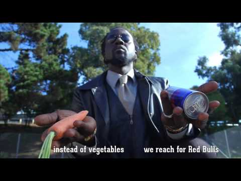 FOOD FIGHT - Earth Amplified feat. Stic.Man of Dead Prez