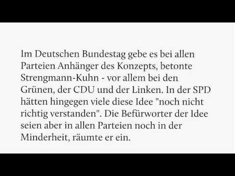 Wolfgang Strengmann-Kuhn plädiert im Interview für das BGE