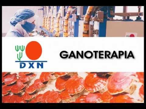3 - Ganoterapia DXN