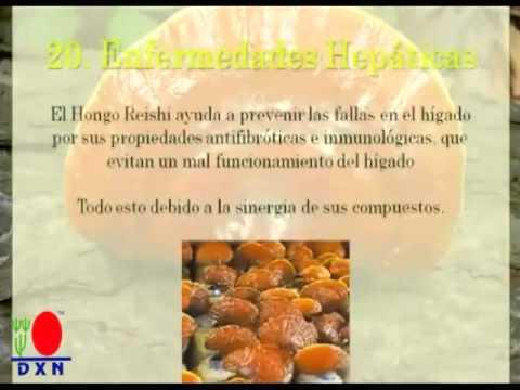 GANODERMA LUCIDUM 30 RAZONES PARA CONSUMIRLO - DXN.- CAFE SALUDABLE