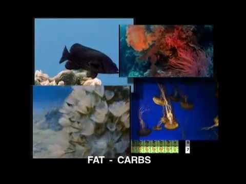 Beber agua de mar es salud, descubre sus propiedades. Seawater