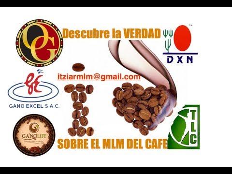 DESCUBRE LA VERDAD TRAS EL MLM DE CAFE CON GANODERMA I ITZIARMLM@GMAIL.COM