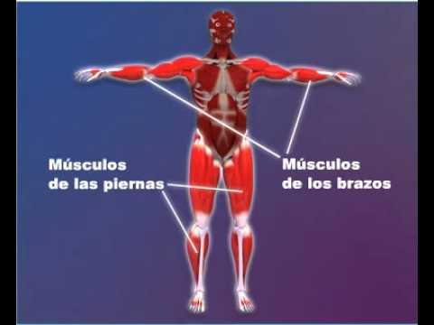 1.- Enfermedad de Parkinson.wmv