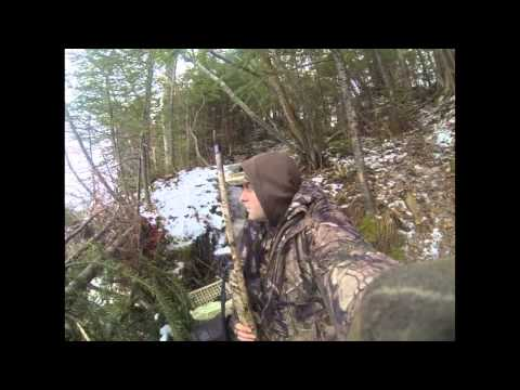 Duck Hinting 2013