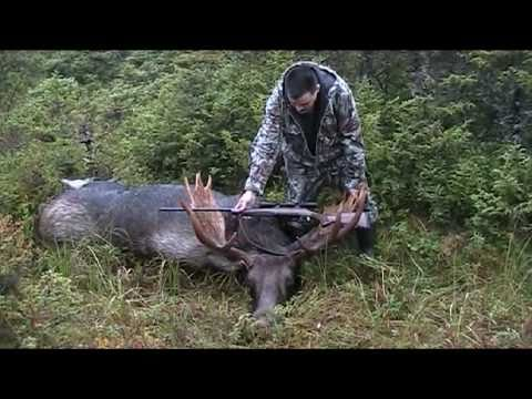 Newfoundland Moose Hunting