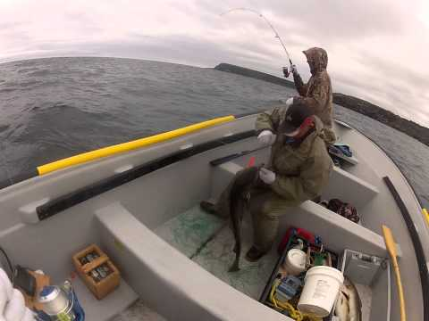 Father hits a nice fish