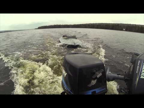 Waterfowl Hunting 2014