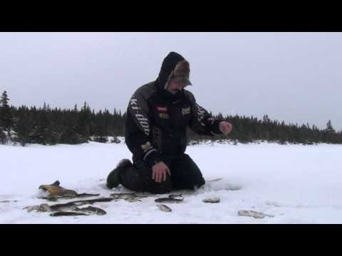 A fish caught every 10 seconds while ice fishing