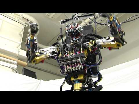 The Sarcos Robot