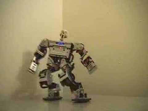Kung Foo Robot. Rook's Pawn III 3 - Function, Motion, & Combat DEMO
