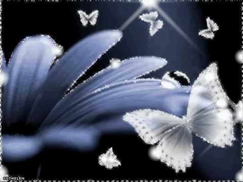 take my wings . . .