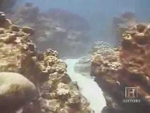 Japan's Mysterious Pyramids (Yonaguni) - FULL VERSION History Channel Documentary