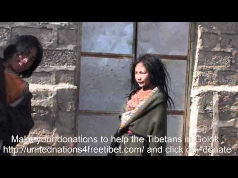 THE PEOPLE OF GOLOK NEED OUR HELP - First relief came to Golok Gade Tsang Shu