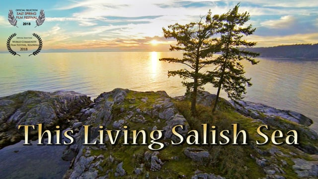 This Living Salish Sea