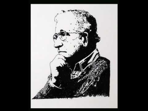 Chomsky on the myth of democracy