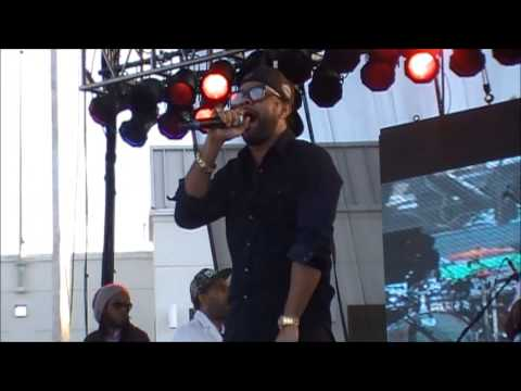 Shaggy performing live at Nine Mile Music Festival 2014 || Dancehall USA
