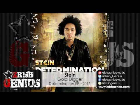 Stein - Gold Digger [Determintaion EP] - May 2015