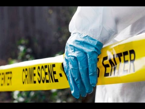 THE GLEANER MINUTE: Tourist killed in crash...Raymond Pryce resigns...JTA warns guidance counsellors