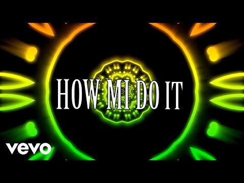 Tommy Lee Sparta, Que Da Wiz - How Mi Do It (Lyric Video)