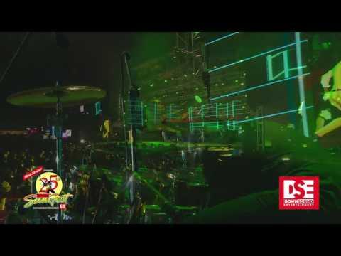 Aidonia & Govana performance highlights at Reggae Sumfest 2017