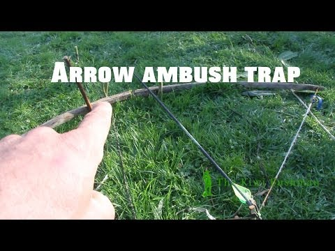 arrow ambush trap