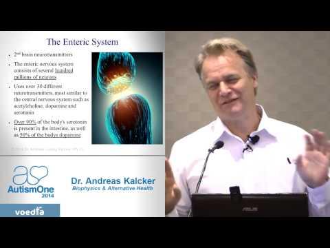 Dr  Andreas Kalcker at AutismOne 2014   Successful Treatment of Autism 720p